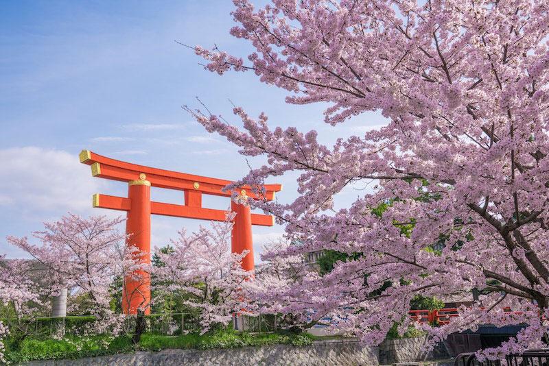 Paket Tour Jepang April 2021