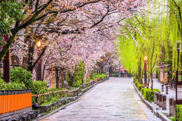 Muslim Tour Jepang 7 Hari