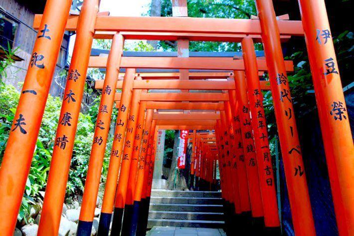 Muslim Tour ke Jepang 5 Hari