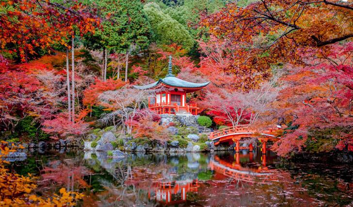 Tour Jepang 8 Hari