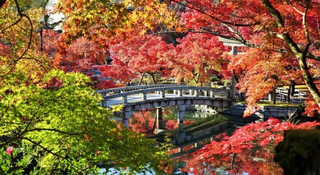 Wisata Jepang 7 Hari