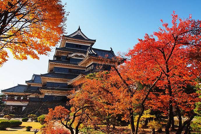 Paket Tour ke Jepang November