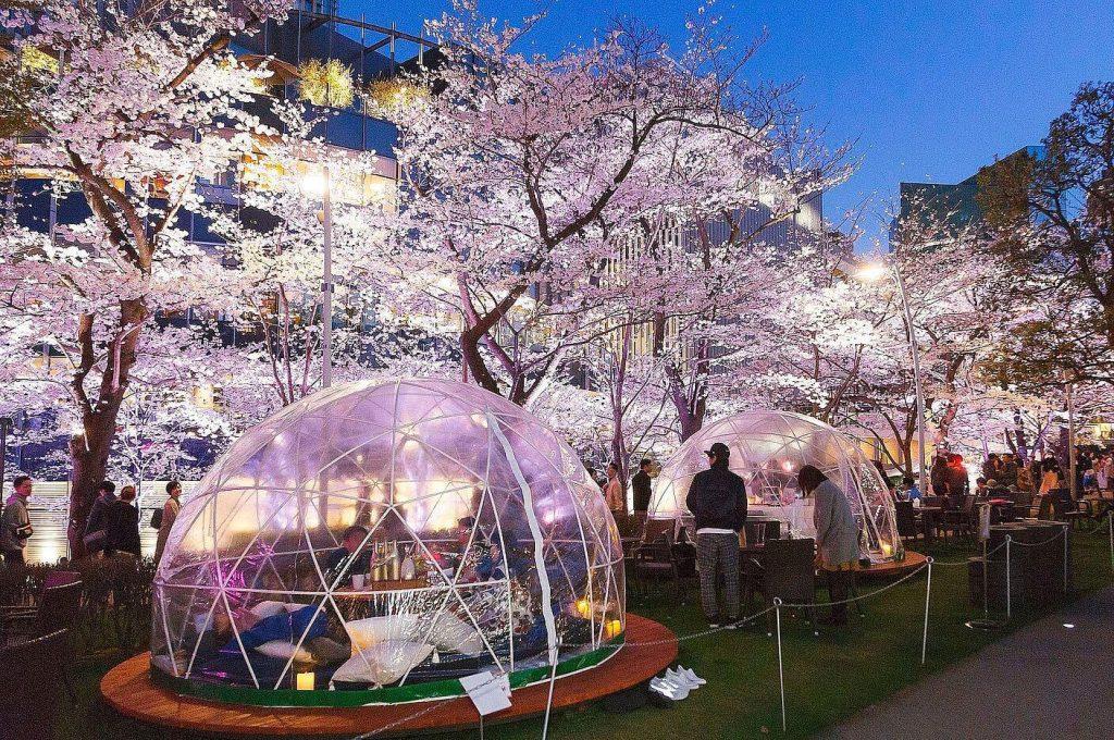 Paket Wisata ke Jepang