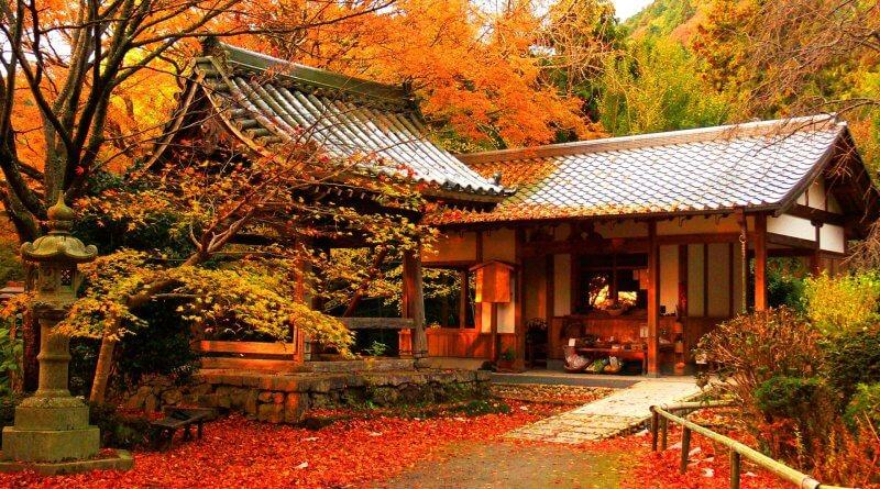 Paket Wisata ke Jepang November